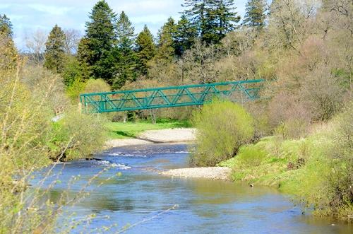 bridge at Newcastleton