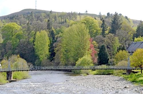 Suspension bridge in Spring