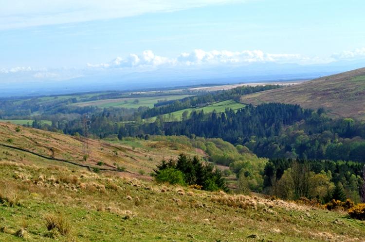 Esk valley south of langholm