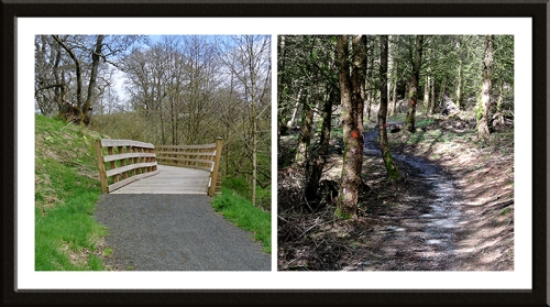 cycle track 7 Stanes