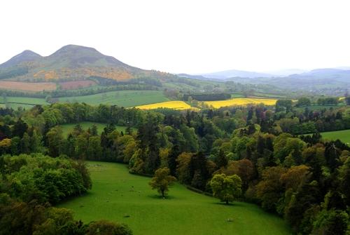 Eildon Hills Scott's view