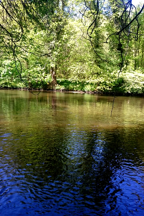River Cramond