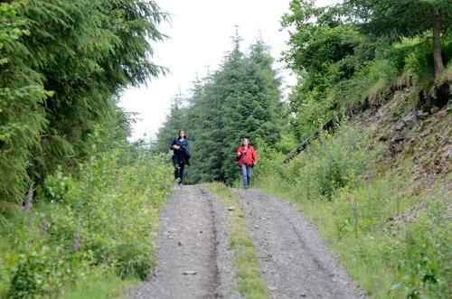 meikleholm track