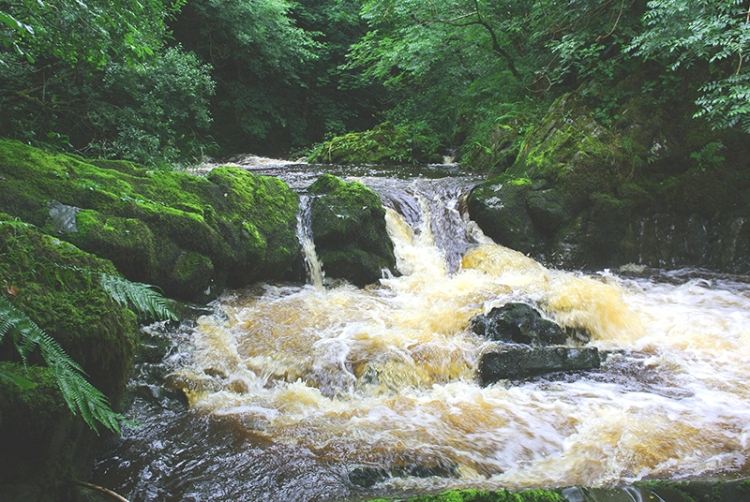 Wauchope cascade