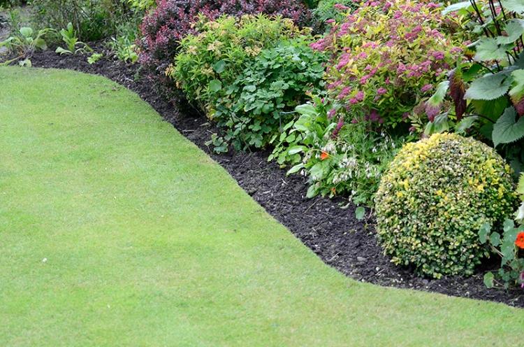 lawn edges