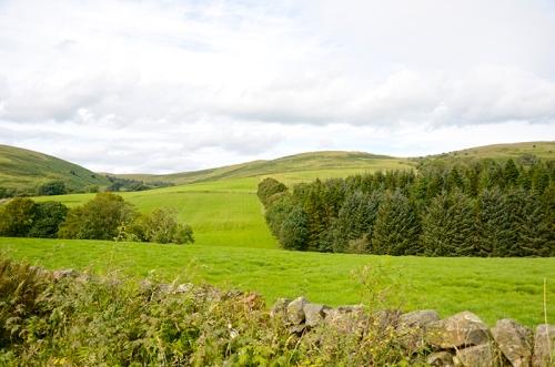 Becks view