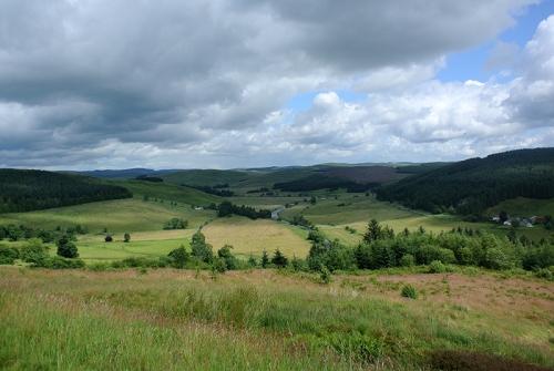Bessie's hill view