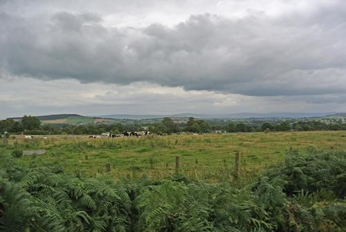 Peterril view