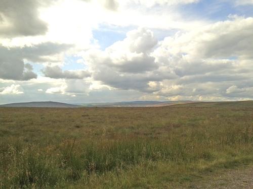 Langholm Moor