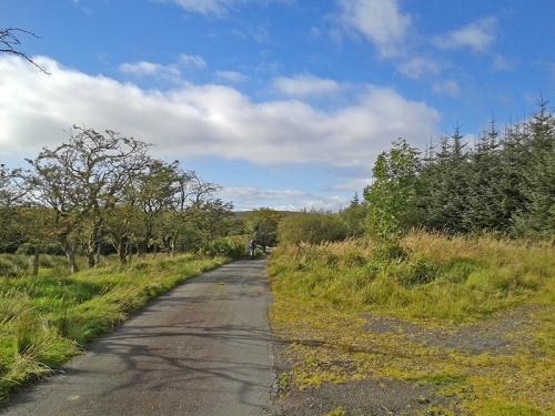 Barnglieshead road