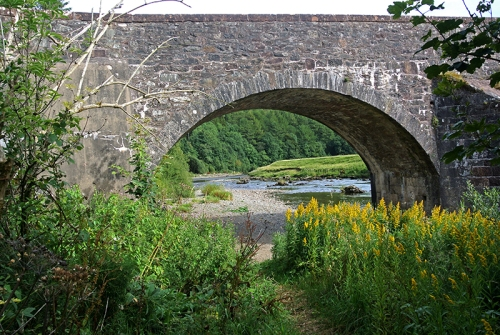 Bentpath bridge