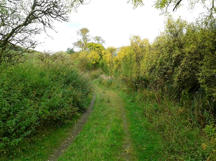 pathhead track