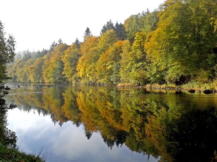 Esk in Autumn