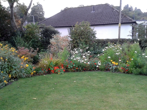 flower beds in October