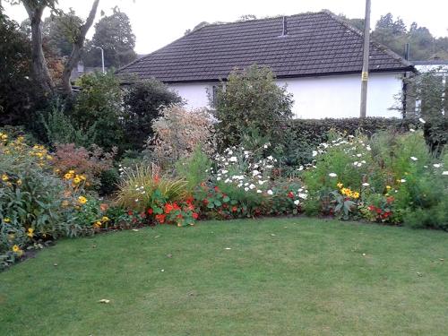 flower beds in October