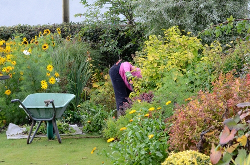 Attila the gardener
