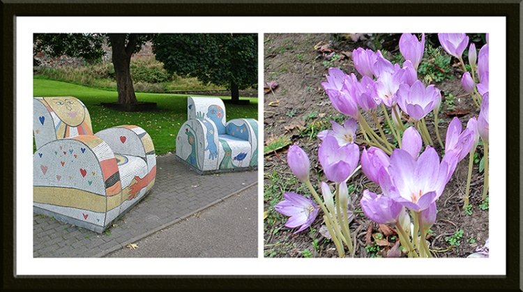 chairs and crocus