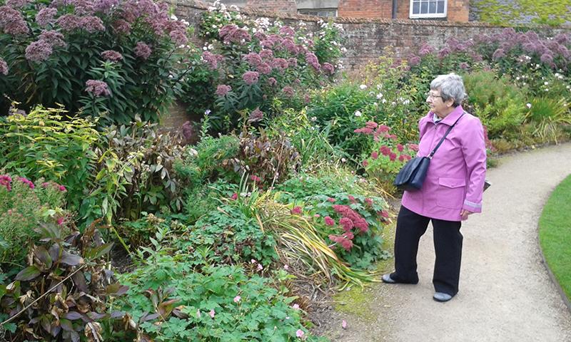 Calke Abbey walled garden
