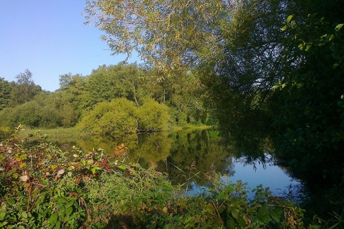 The small lake in Parliament Hill Fields