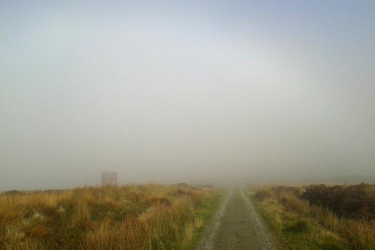 Mist on whita