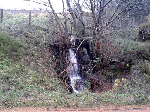 cascade beside Wauchope raod
