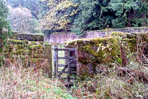 gate and wall Lamb Hill