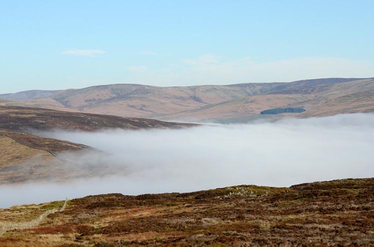 Tarras valley in mist