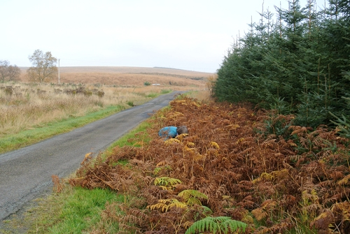 bracken cutting