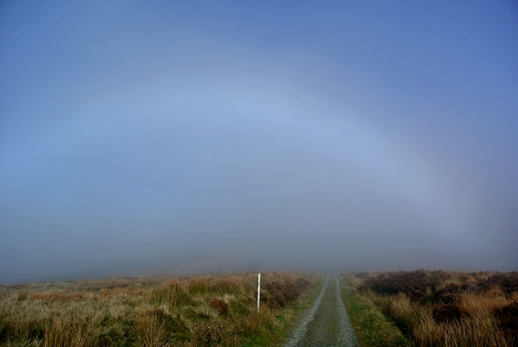 fog bow on whita