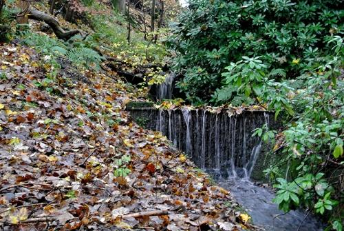 saw mill cascade