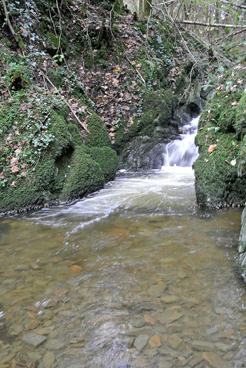Becks cascade