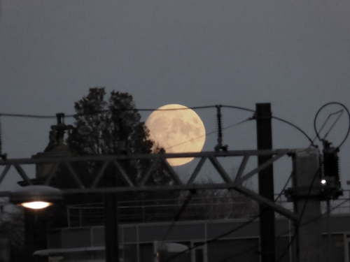 Moon at Waverley
