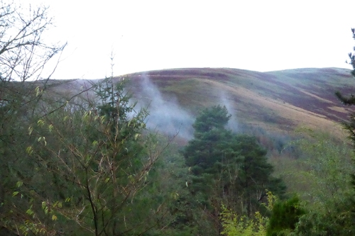 Mist above the Esk