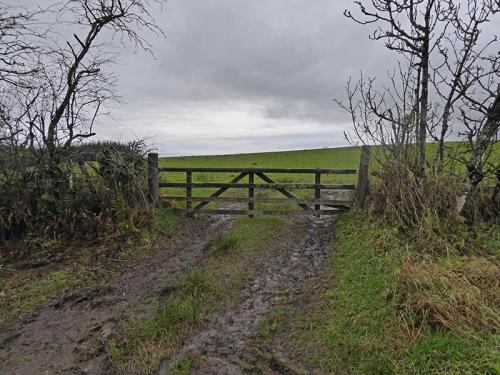 Gilnockie gate