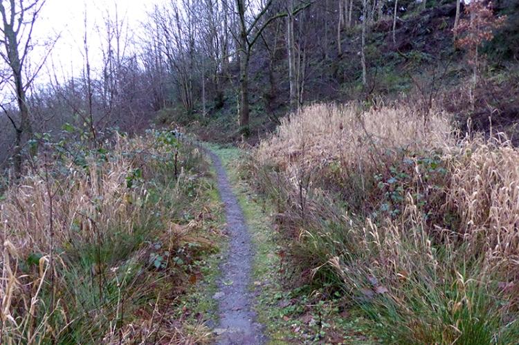 Eskdaill Street path