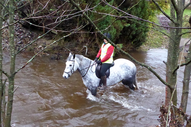 fording the wauchope