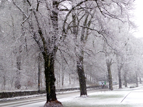 A7 at Kilngreen in snow