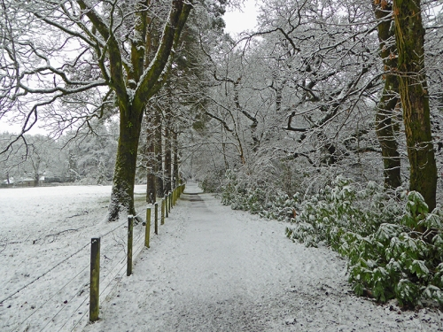 riverside path in snow