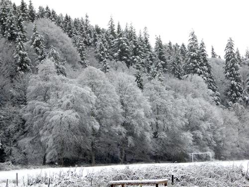 Castleholm in snow