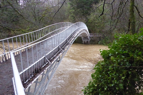 Duchess Bridge in flood