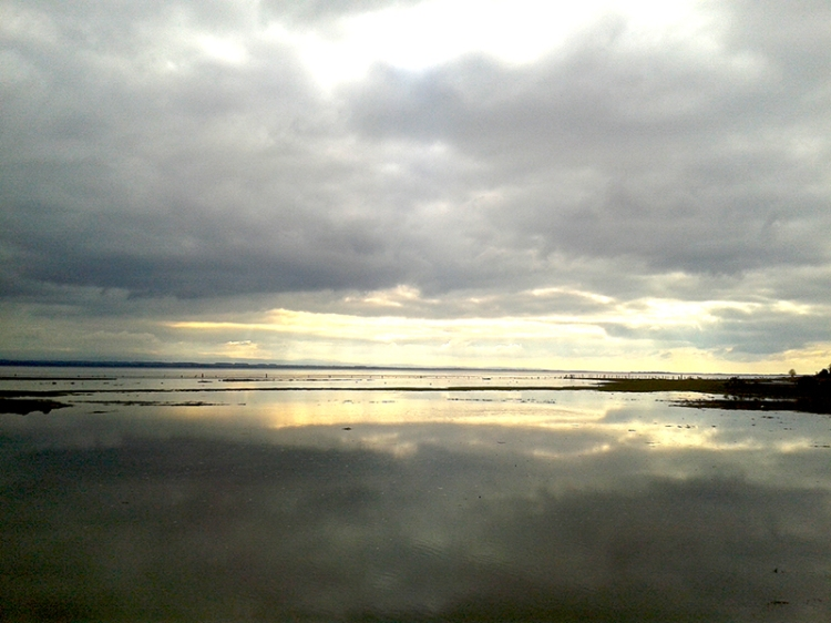 Solway Firth