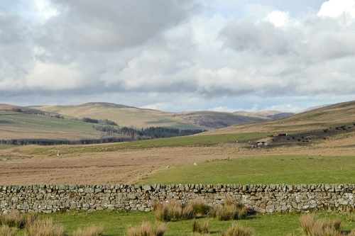 Wauchope valley view