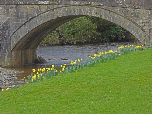 The Sawmill Bridge