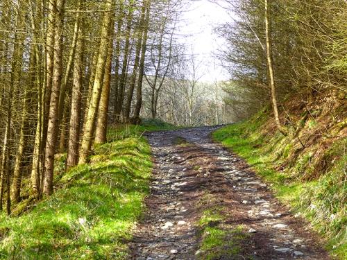 Whitsiels track