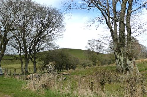 View at Ryehills