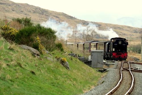 train from Bedgelert