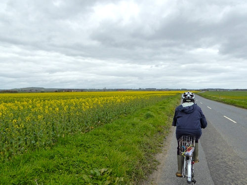 Cycling out of Anstruther