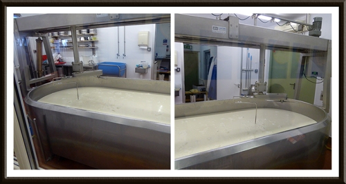 Anster Cheese making