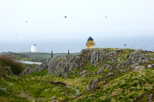 Isle of May
