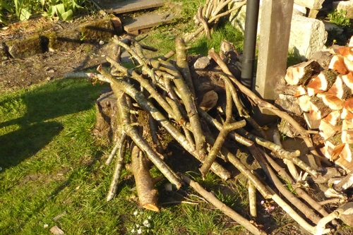 pile of sticks